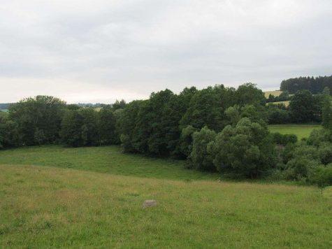 Idylle pur! Riesiges Grund- und Waldstück mit Altbestand zur Selbstverwirklichung., 08258 Siebenbrunn, Grundstück